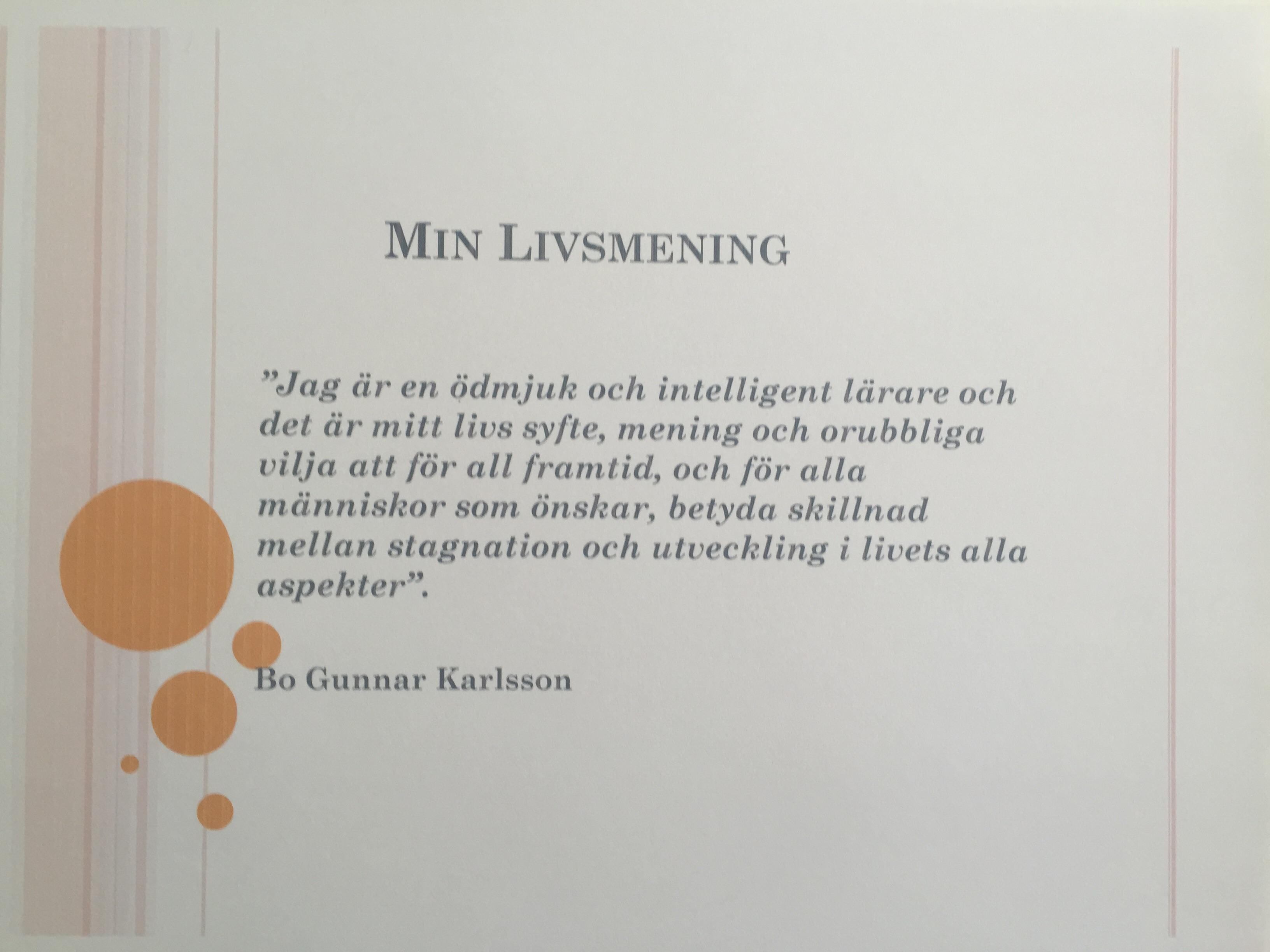 Livsmening